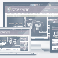 Custom Responsive Website Design